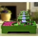 Fontaine lotus vert
